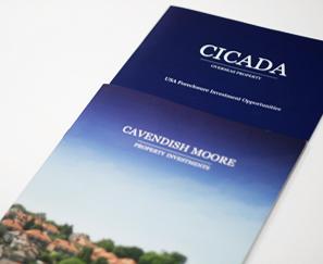 Cicada Logo Design